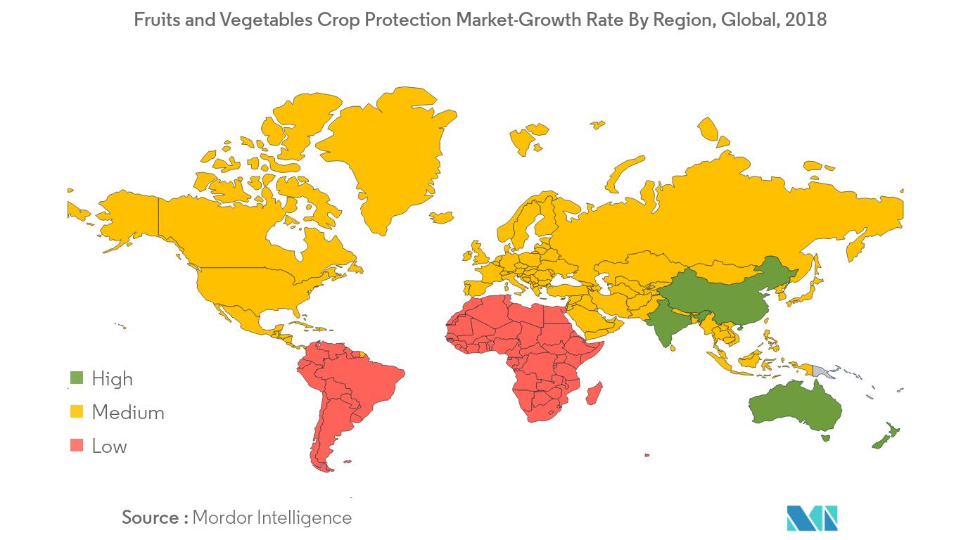 global-clove-market2