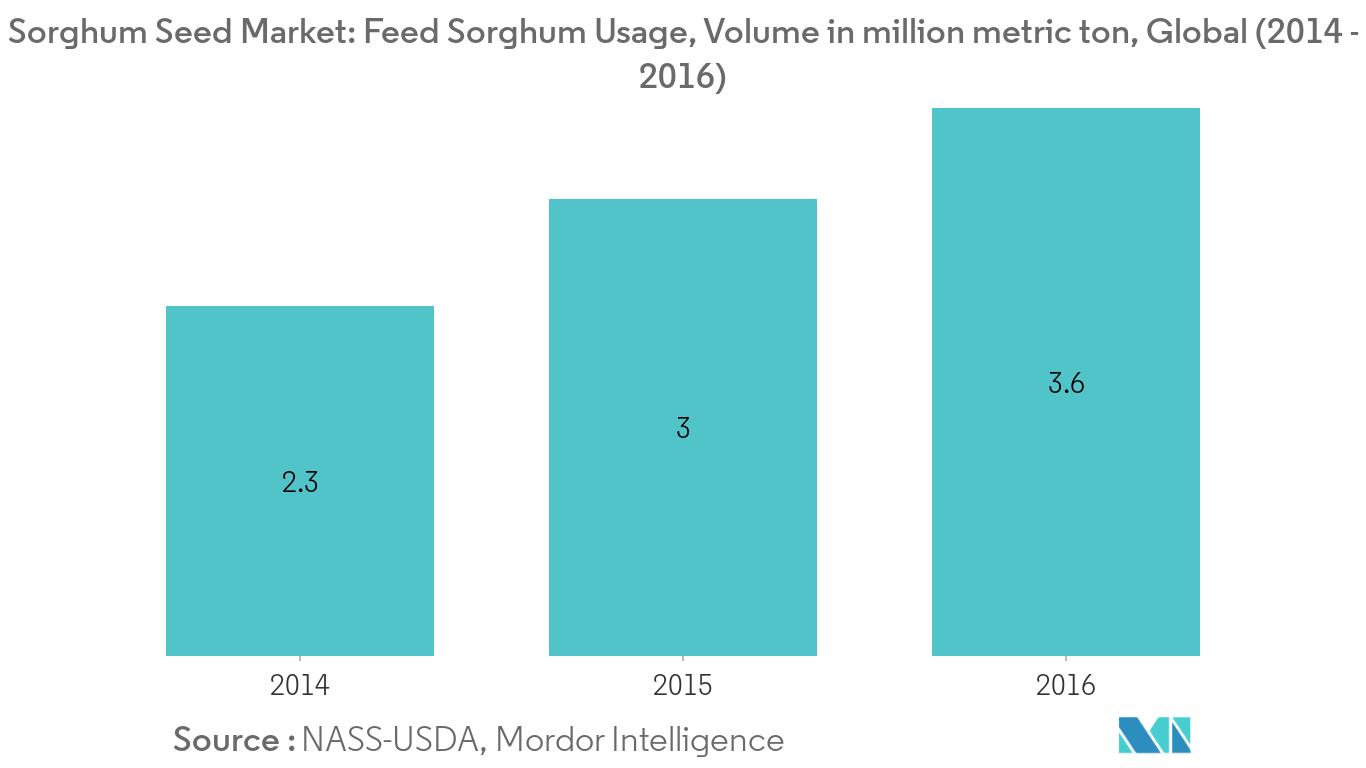 Sorghum Seed Market1